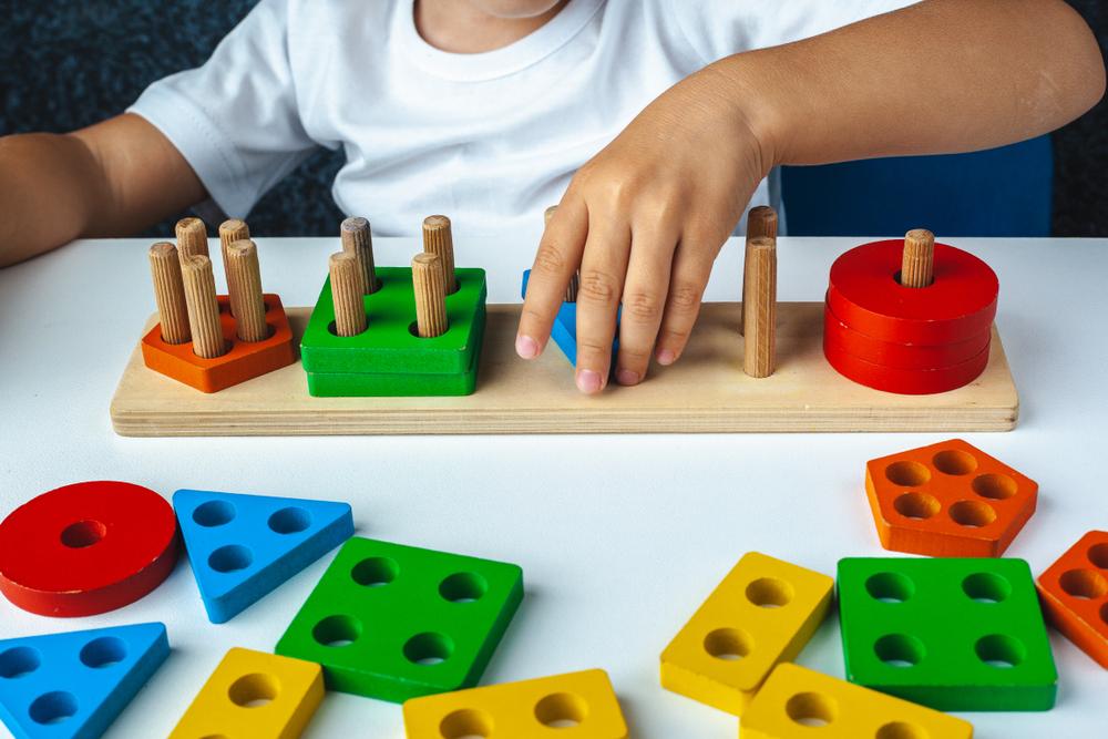 Spielwaren Großhandel Toi Toys